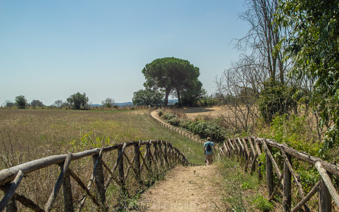 Da Formello a Isola Farnese – Variante per Tomba Campana e Ponte Sodo