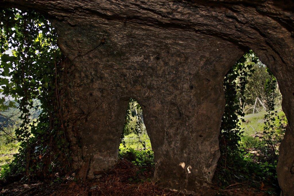 L'accesso alle Valli del Sorbo è questo pendio di Grotte, alcune in proprietà privata, altre ritrovo di piccoli cinghiali.