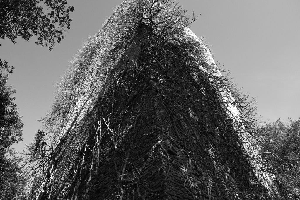 Il fosso della Torraccia si getta nel Cremera tra Grotte Franca e Le Piscine (tratto suggestivo per gli alberi). All'origine di questo fosso si innalza mastodontica e selvaggia, la Torraccia. Difficile da raggiungere ma non impossibile.