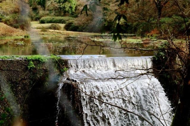 L'antico Mulino e il ponte romano fanno da cornice alla cascata. Uno dei luoghi più visitati, molto coreografico, animali al pascolo e vallate silenziose, immerse nel verde.