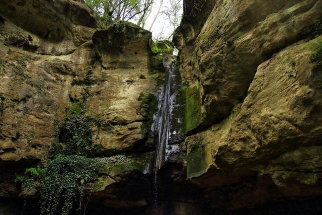 Arrivare alla cascata dal Santuario è pittoresco. Il percorso è interrotto da molti alberi caduti. Tuttavia è un luogo tra i più suggestivi, con una sua microsfera, la presenza della Salamandrina con gli occhiali, e una vegetazione intensa e piena di pathos.