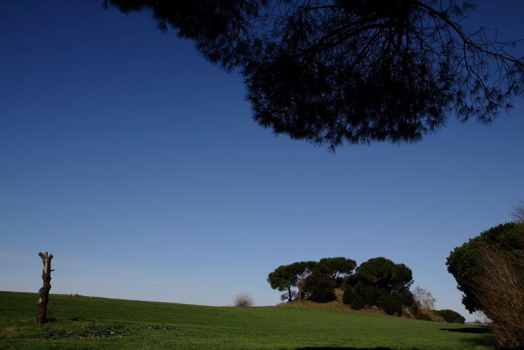 Alle spalle della Centrale Elettrica su via della Giustiniana, si estende un viale alberato, di pini, e sul finire della passeggiata avvolta nel silenzio si accede a Monte Oliviero da cui si ha una veduta di Monte Aguzzo.