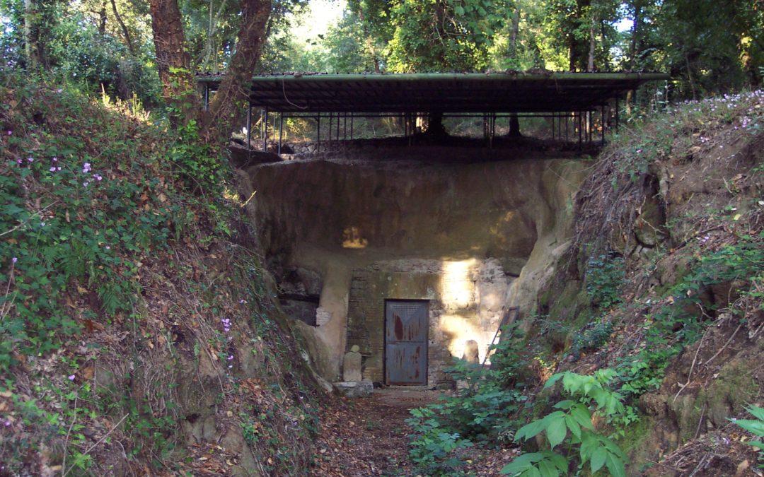 Il 4 giugno visita alla Necropoli di Monte Michele e alla Tomba Campana
