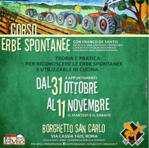 Corso erbe spontanee commestibili a Borghetto San Carlo